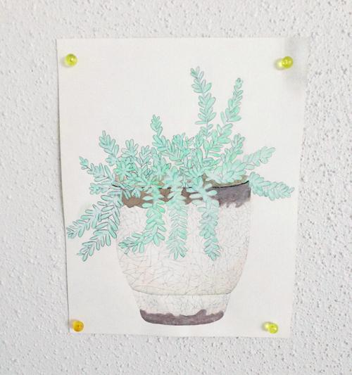 Plantillustration4